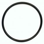 44366 Retainer Ring