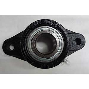 Bearing Flange 2 Bolt 1 125 94536