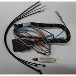FISHER SERVICE HARNESS KIT 12-PIN (VEHICLE SIDE) 22338K