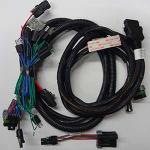 Fisher / Western 29051 Plug In Harness Kit
