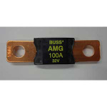 FISHER 100 AMP FUSES 95836